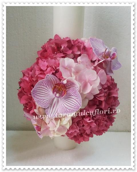 Lumanari nunta scurte hortensie orhidee 0148